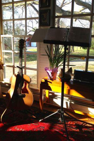 81_365 Guitars