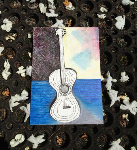 133_365 Guitars