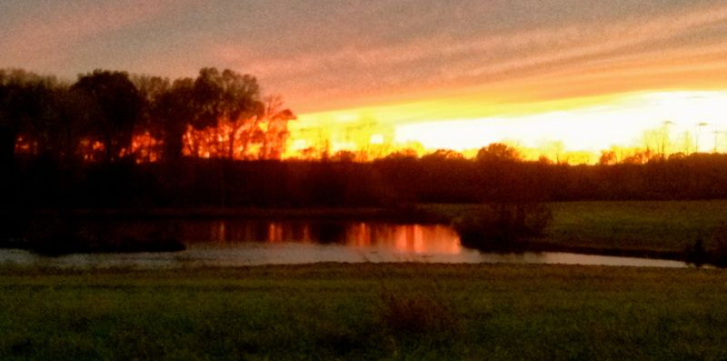 Sunset 11/12/13